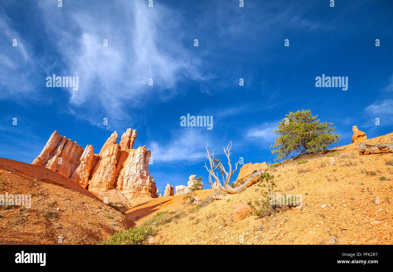 Rock formations in Bryce Canyon National Park, Utah, USA. - Stock Image