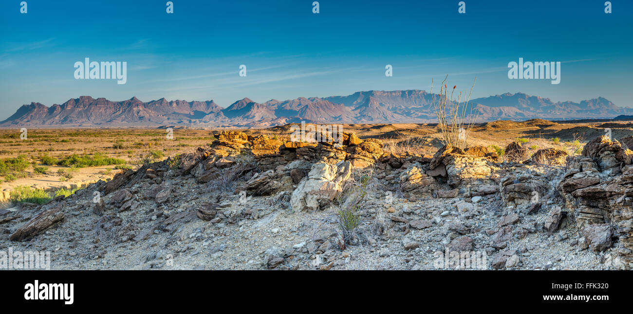 Chisos Mountains, view at sunrise in Mariscal Mountain area, Chihuahuan Desert, Big Bend National Park, Texas, USA - Stock Image