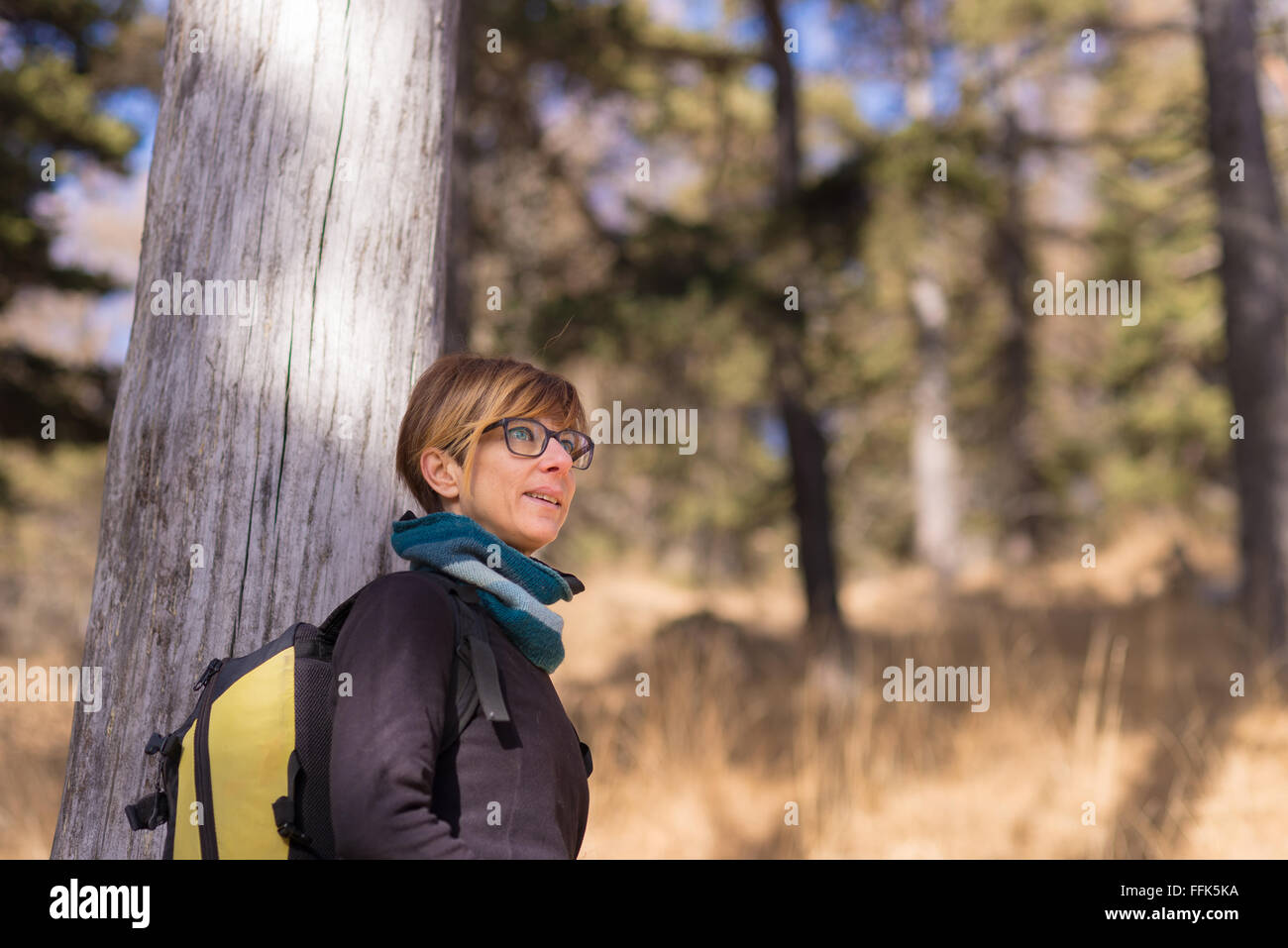 Portrait of adult woman looking away, with green eyes and cheerful facial expression, leaning on larch tree trunk. - Stock Image
