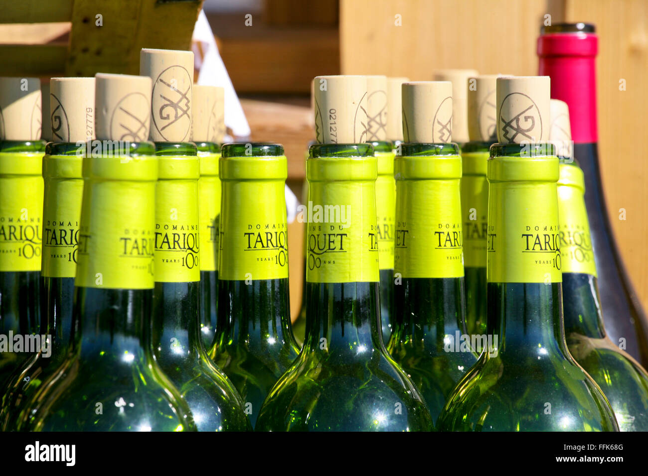 Empty bottles of  Tariquet wine , France Stock Photo