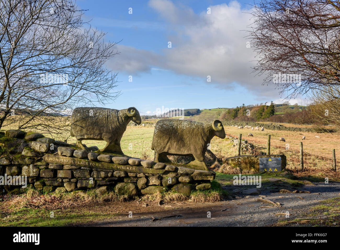 Teesdale  - stone sheep sculpture - Stock Image