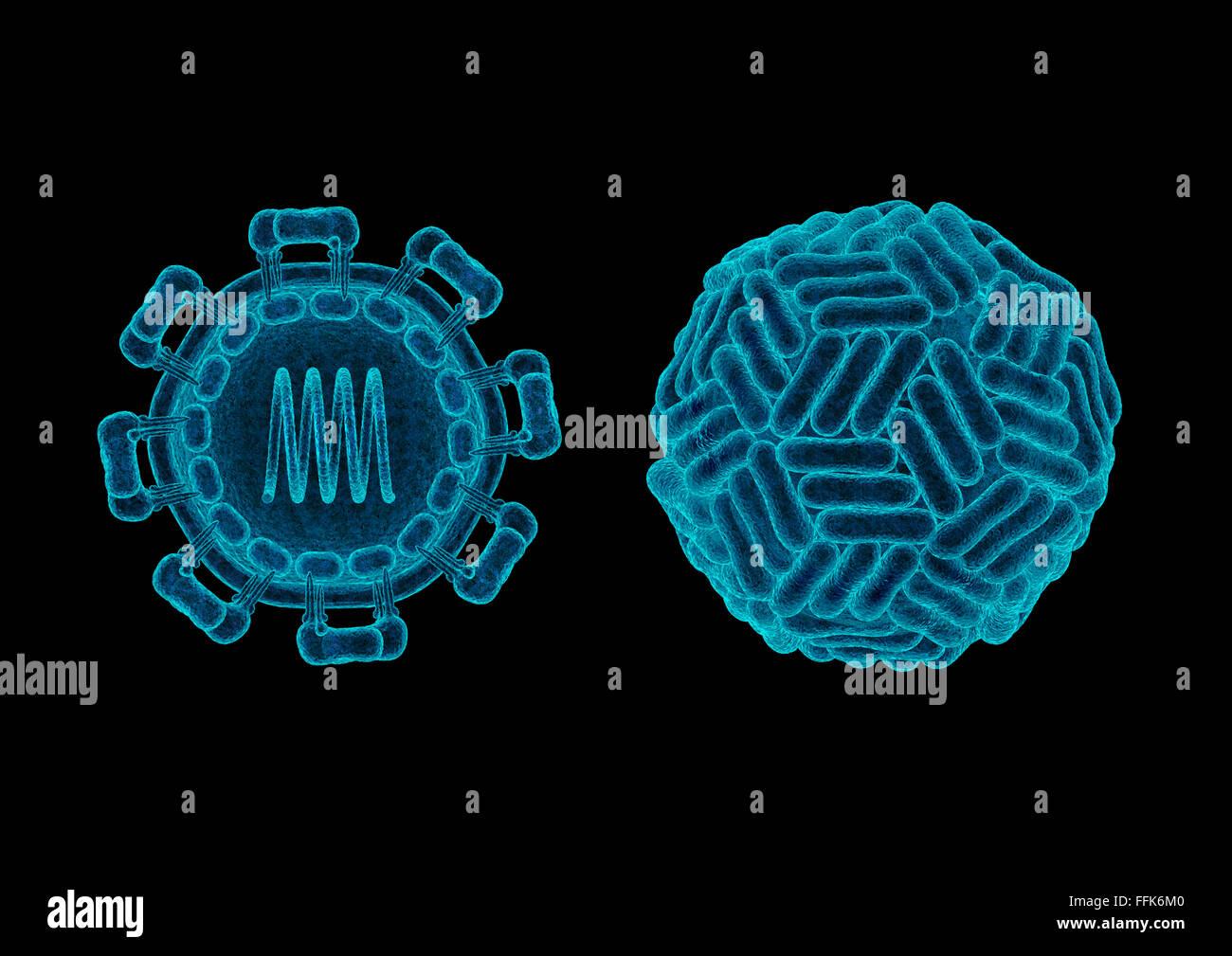 Zika virus structure concept / 3D render of Zika virus (ZIKV) showing distinct 3-like organisation of surface dimers - Stock Image