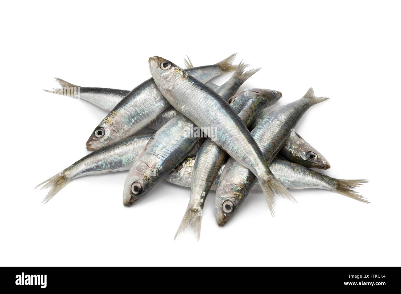 Fresh raw sardines on white background - Stock Image