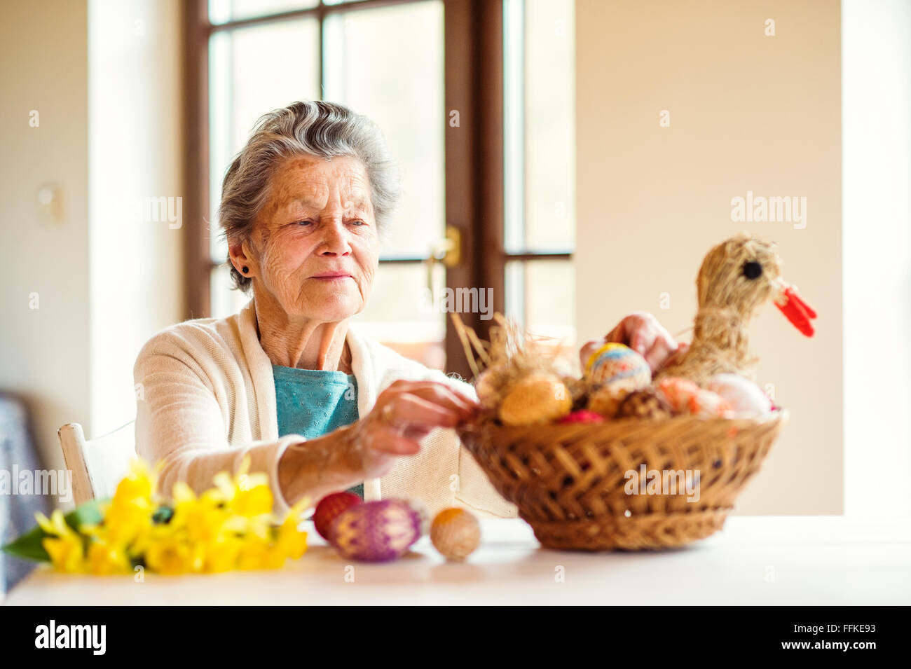 Senior woman arranging basket with Easter eggs and daffodils Stock Photo