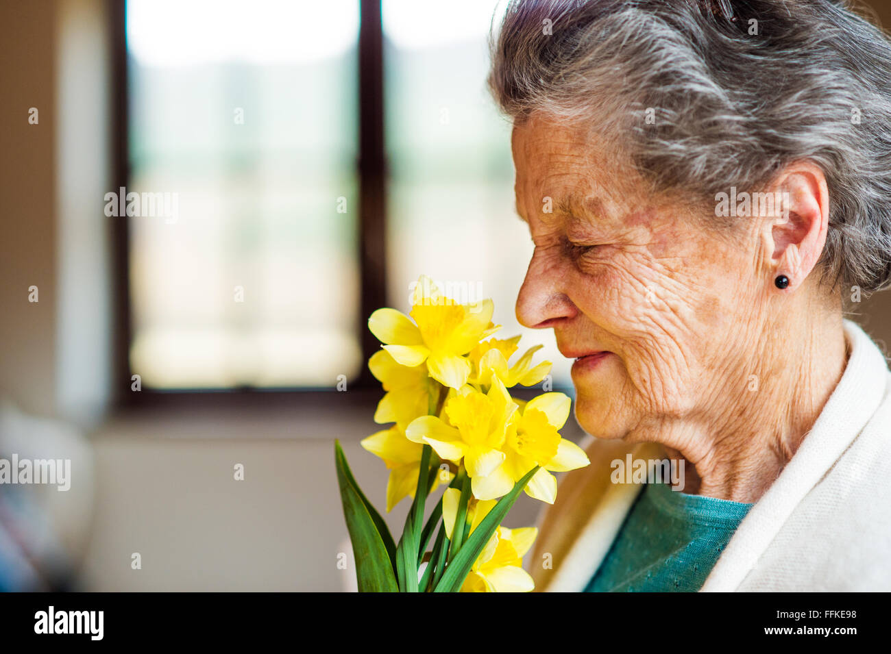Senior woman by the window smelling bouquet of daffodils - Stock Image