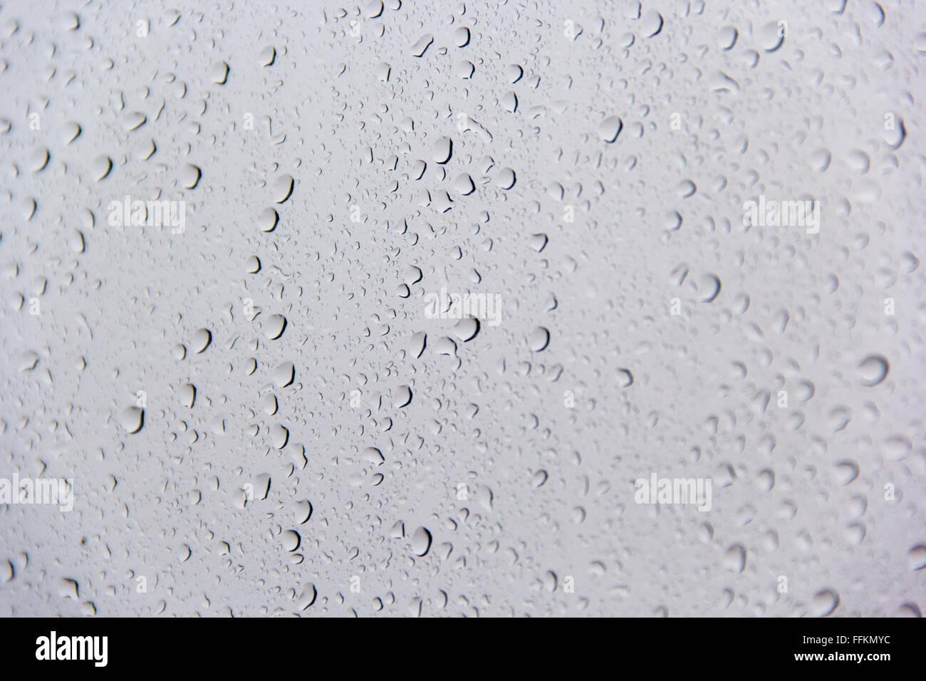drop, bead, gout, blob, drip, trickle, dribble, tear, minim, arthritis, podagra, chalk-stone, rain, rainfall, water, - Stock Image