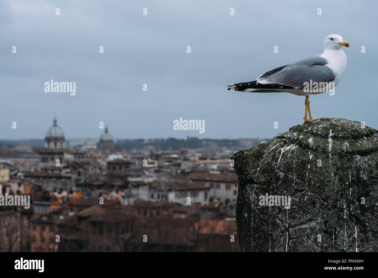 Blur Above View Stock Photos & Blur Above View Stock Images - Alamy