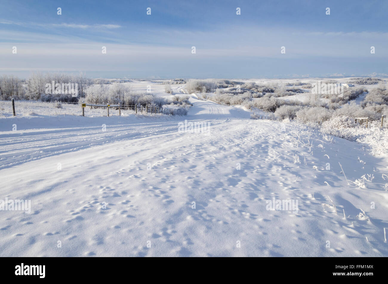 A winter wonderland scene of snow and hoar frost, stretching as far as the Rocky mountains. Foothills, Calgary, - Stock Image