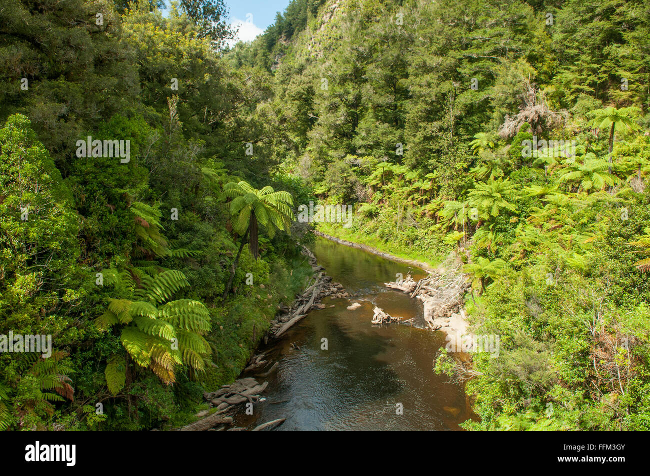 Tangaraku River, Forgotten World Highway, Taranaki, New Zealand - Stock Image