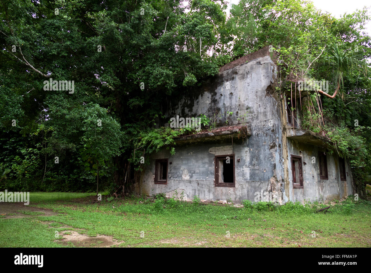 Old military building in jungle. Battle of Peleliu, Palau 1944 (Operation Stalemate II) between the US and Japan - Stock Image