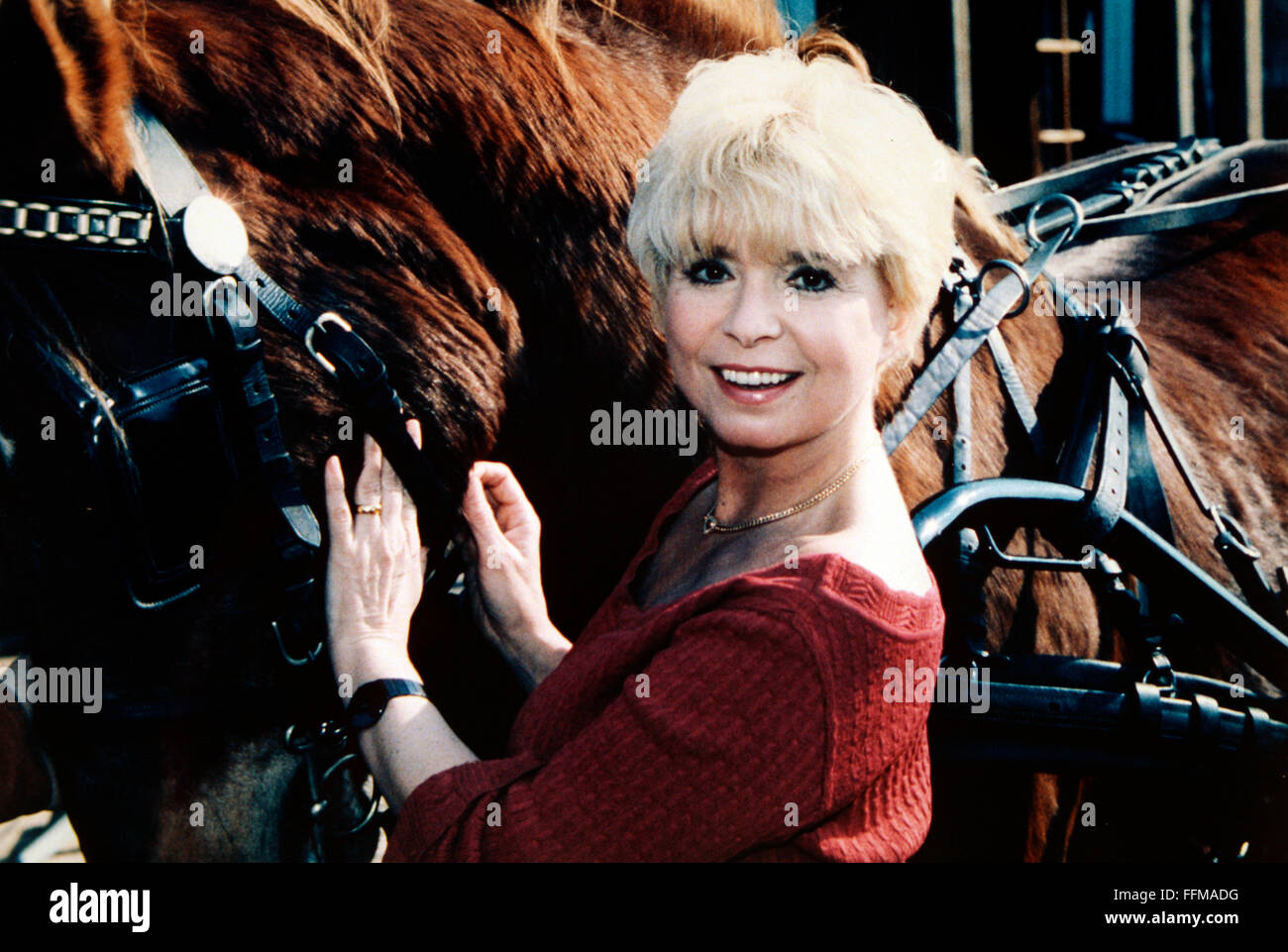 Steeger, Ingrid, * 1.4.1948, German actress, half length, with horse, at the Karl May Festival in Bad Segeberg, - Stock Image