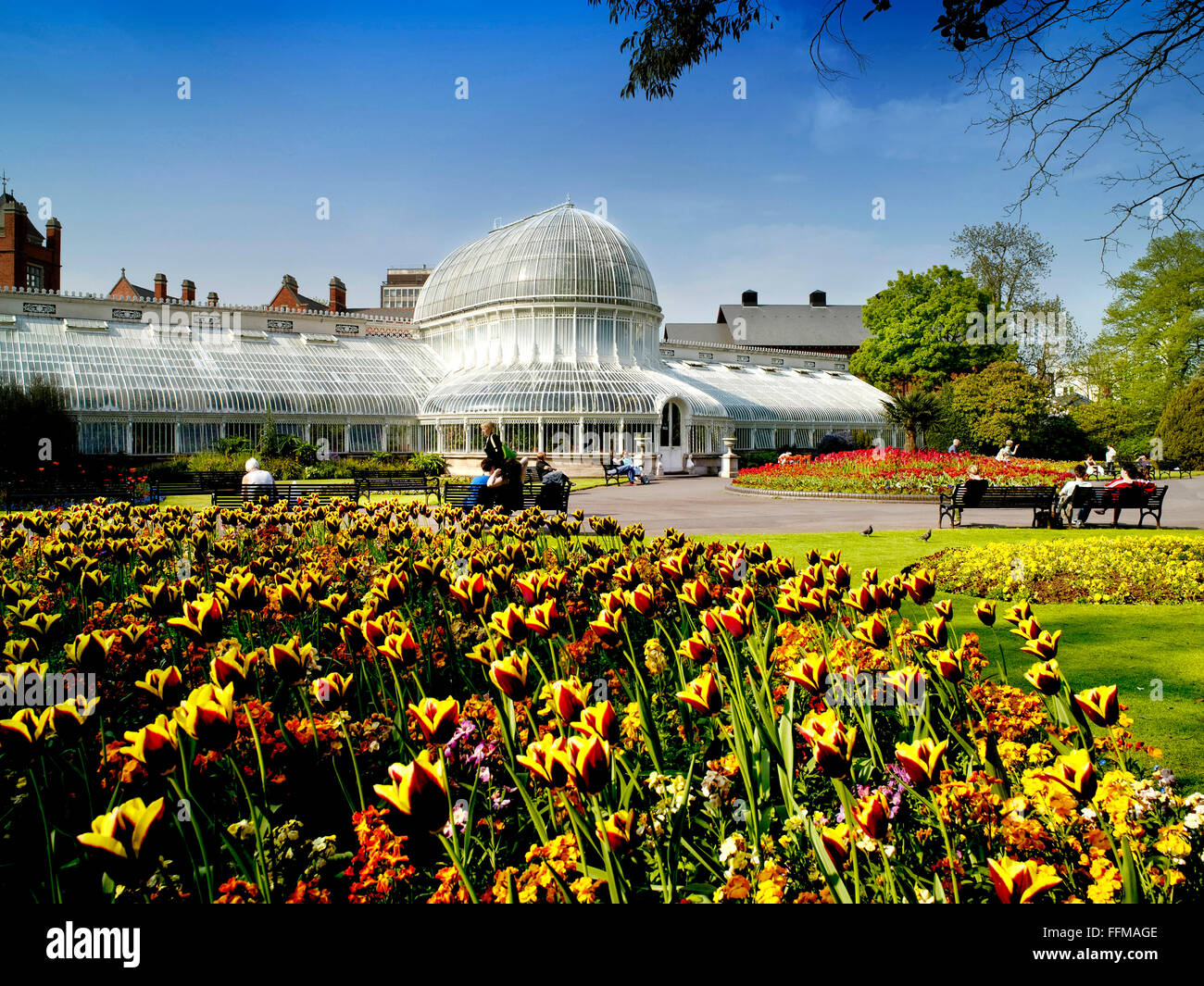 Spring Flowers Botanic Gardens Queens Belfast Lanyon Northern
