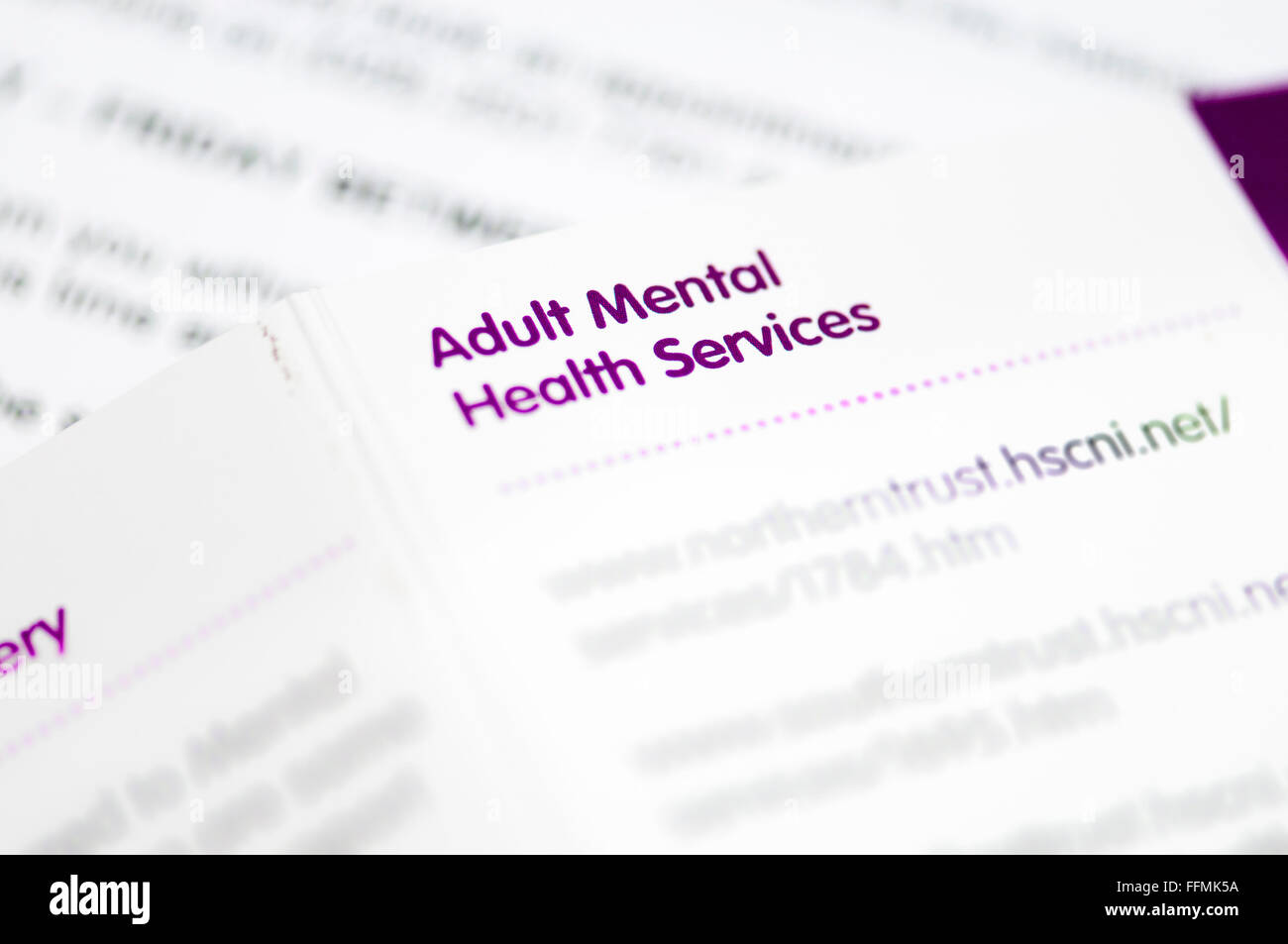 Directory of Adult Mental Health Services for Northern Ireland. - Stock Image