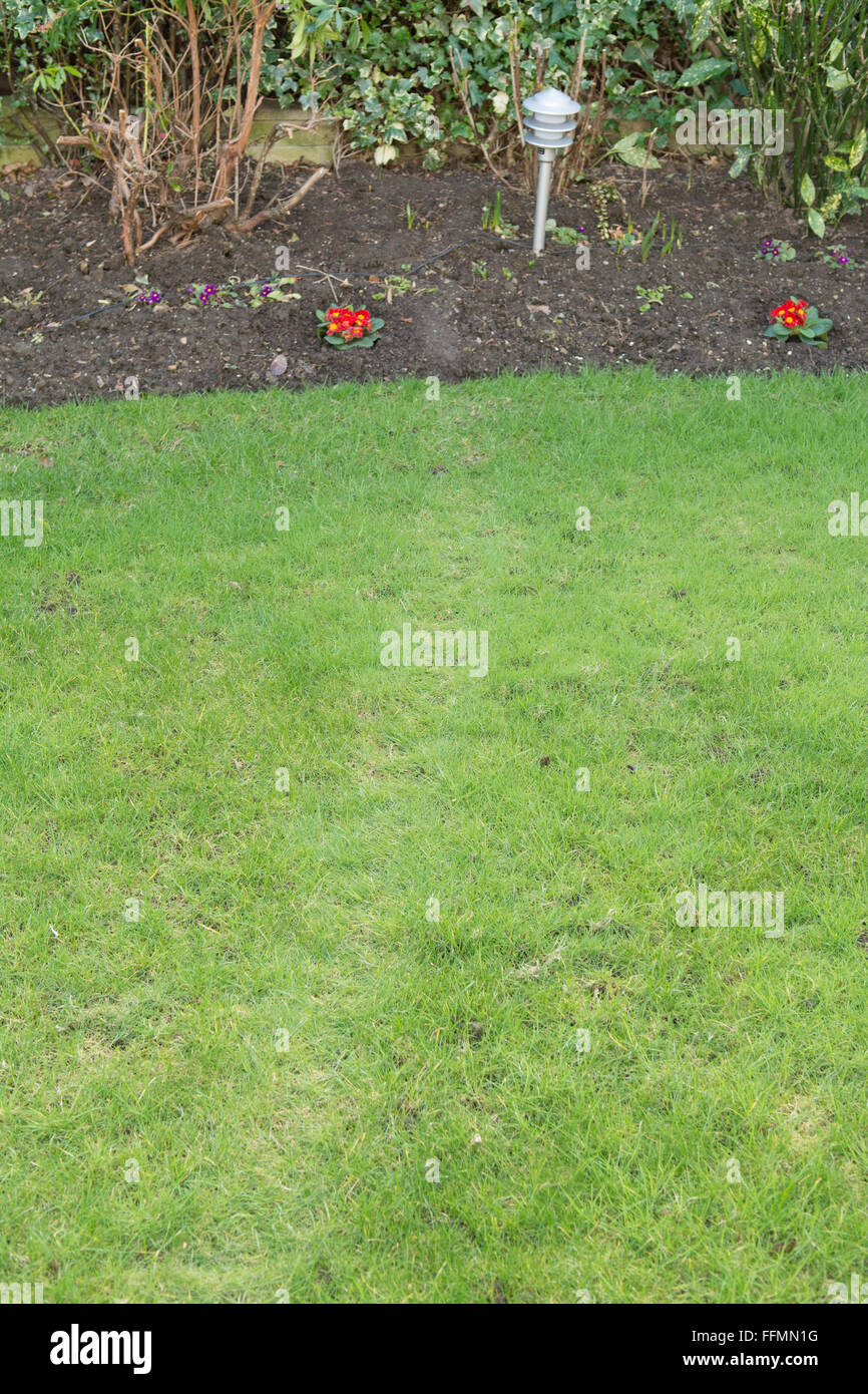 Tell tale sign of a rat visiting a garden - track and grease marks left by the rat as it follows the same path to - Stock Image