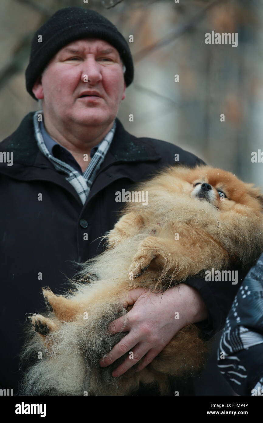 Yaroslavl, Russia. 16th February, 2016. A man with a pet dog near the site of a blast in a block of flats at Shestaya - Stock Image