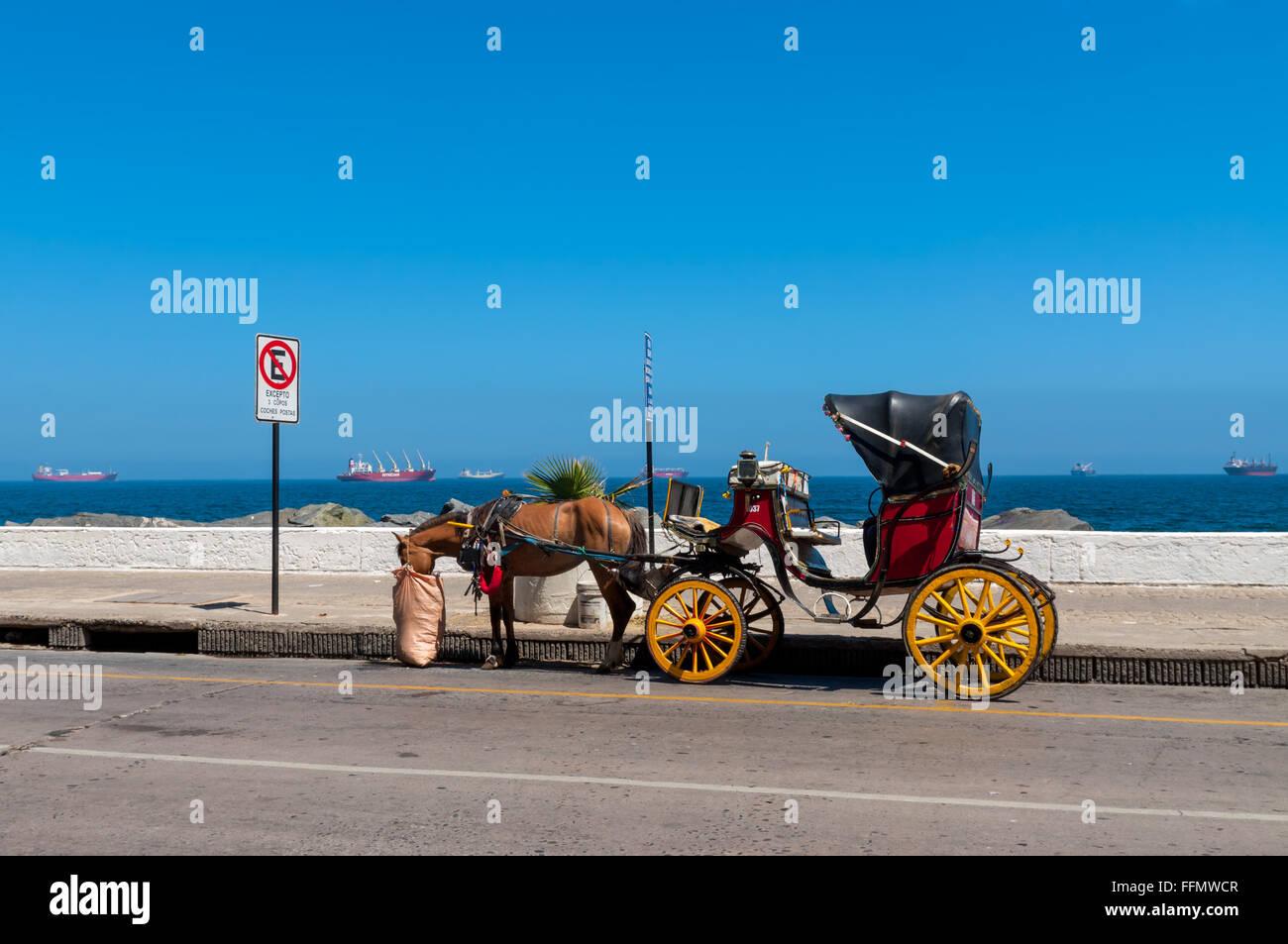 A tourist transport through the city. Vina del Mar, Chile - Stock Image