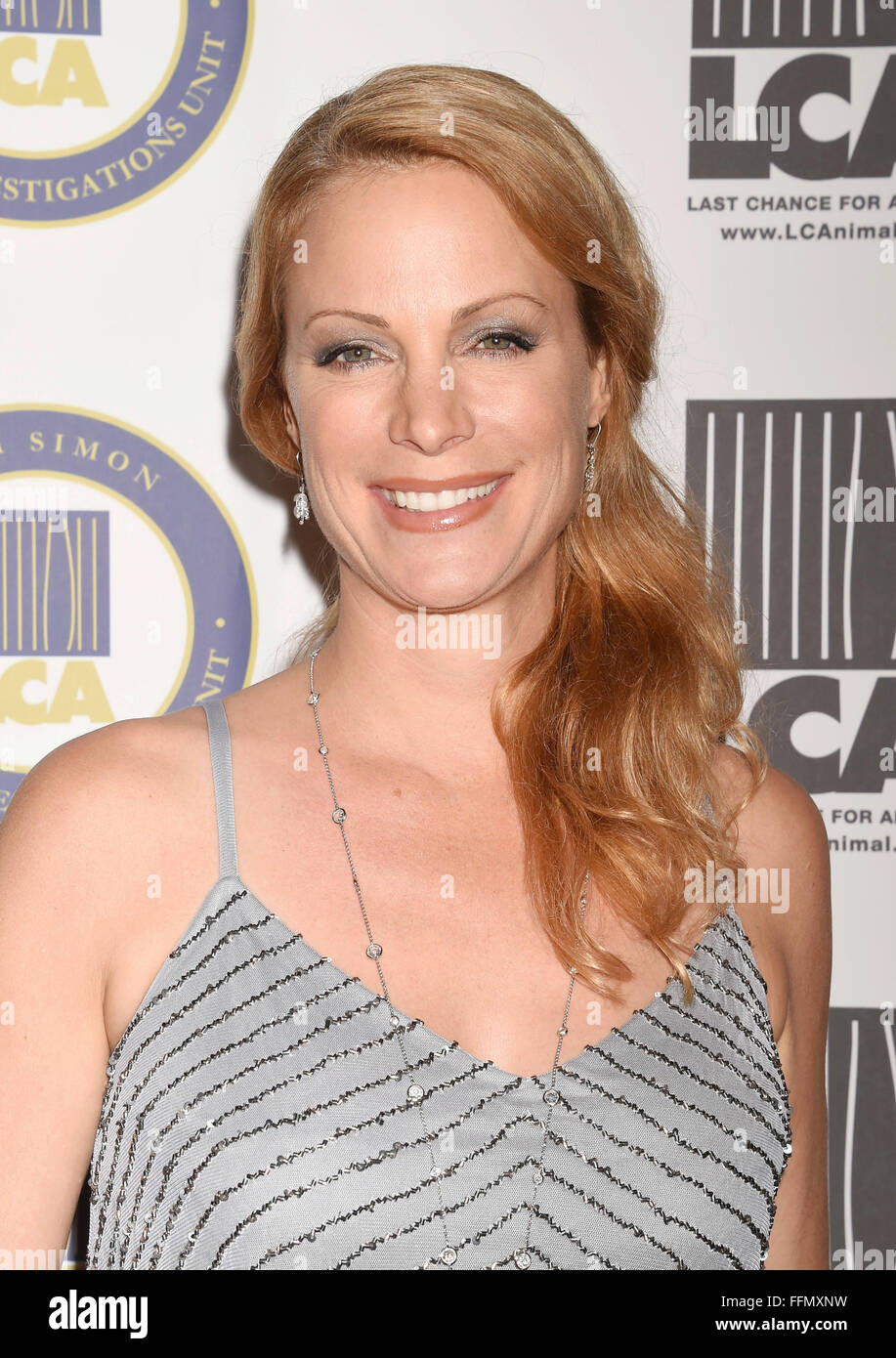 Actress Alison Eastwood attends the Last Chance for Animals Benefit Gala at The Beverly Hilton Hotel on October - Stock Image