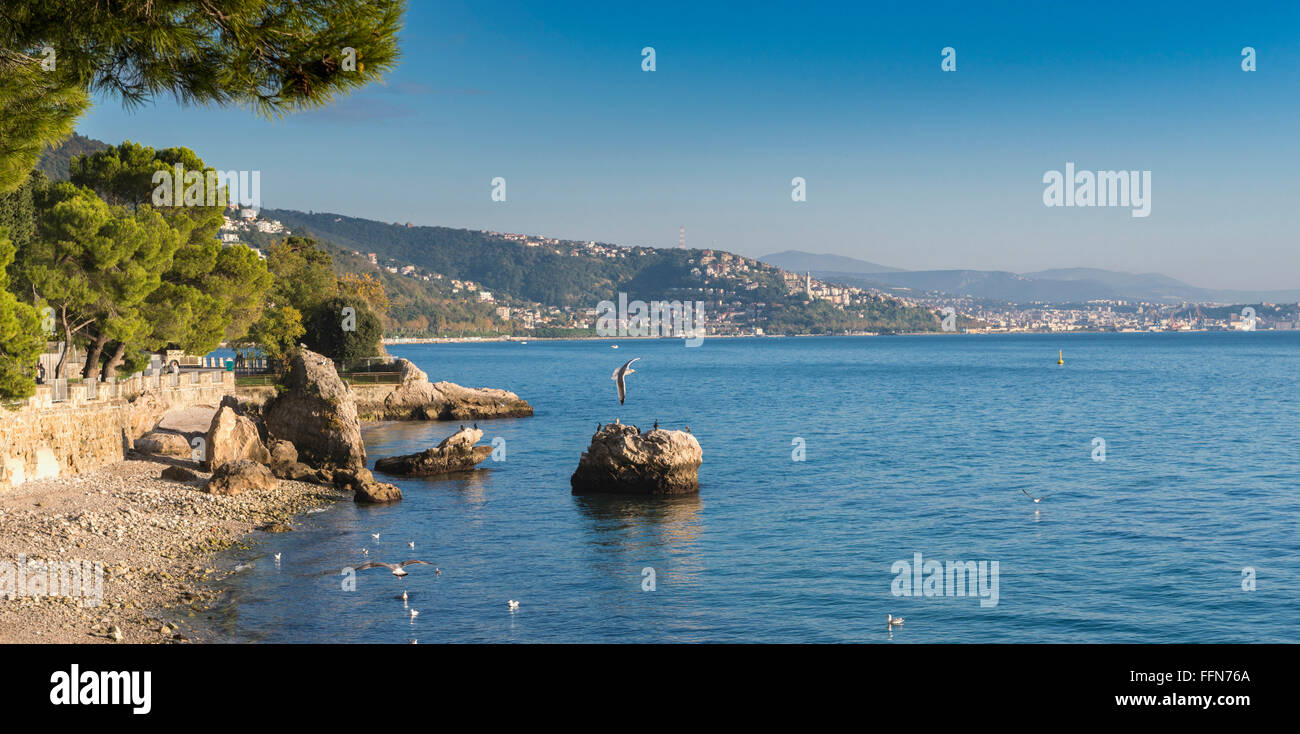 The coastline of the Gulf of Trieste on the Adriatic Sea, with the city of Trieste Italy, Europe in the distance - Stock Image