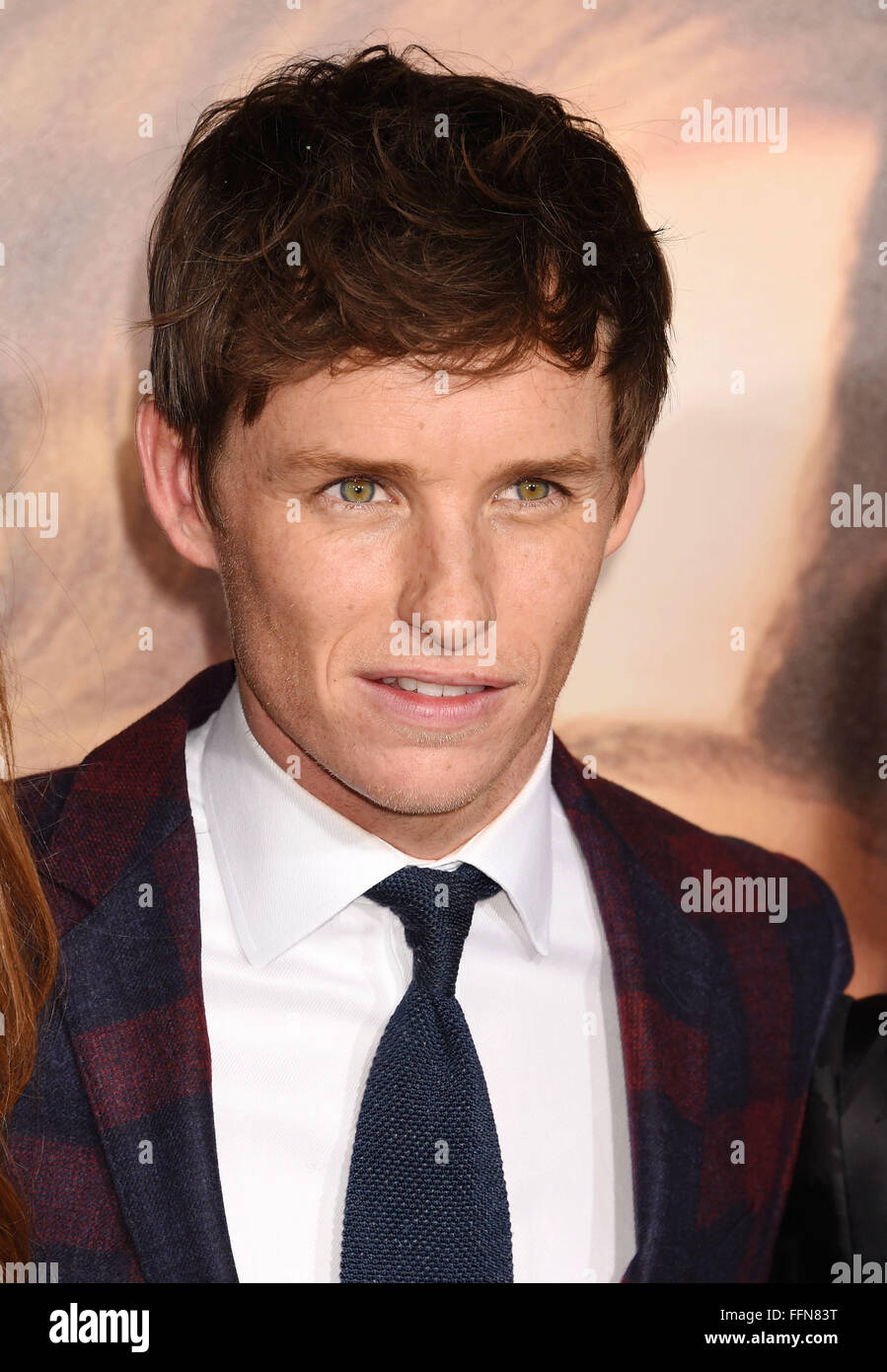 Actor Eddie Redmayne arrives at the premiere of Focus Features' 'The Danish Girl' at Westwood Village - Stock Image