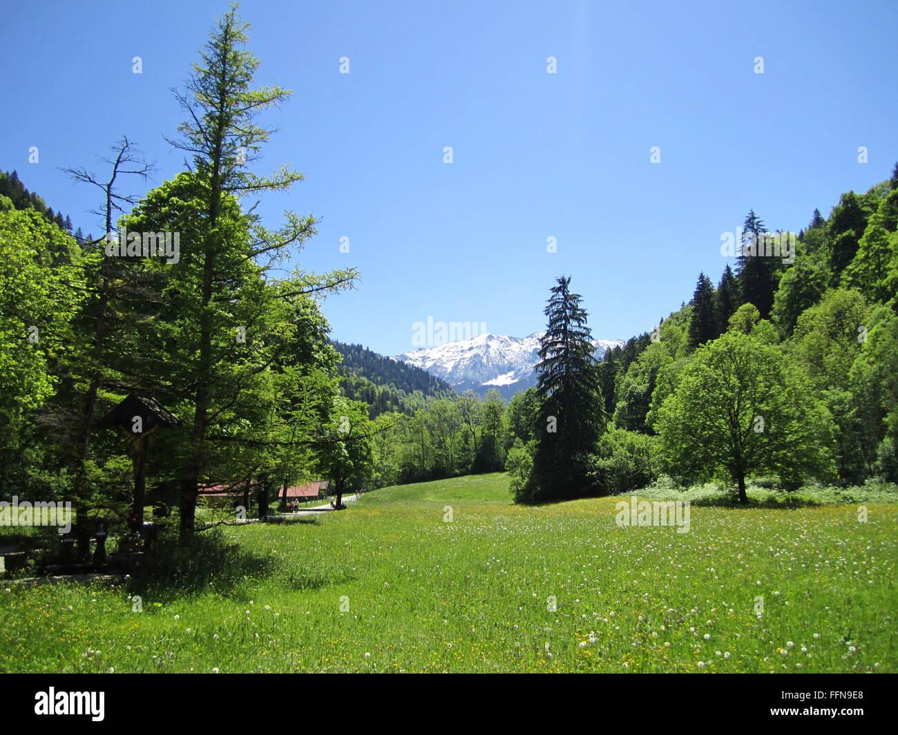 geography / travel, Germany, Bavaria, landscape, Wetterstein, Werdenfelser Land, Wildenauer Strasse, Partnach Valley, - Stock Image