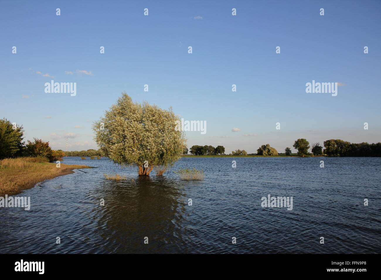 geography / travel, Germany, Brandenburg, landscapes, Elbe River, Additional-Rights-Clearance-Info-Not-Available - Stock Image