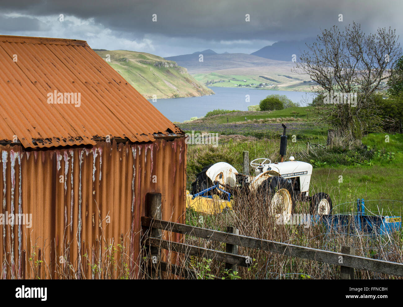 david brown tractor and old rusty shed crofting on skye - Stock Image