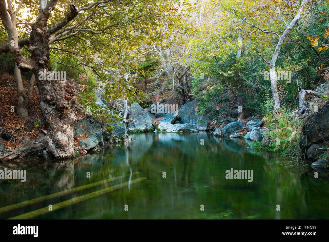Griechenland, Kreta, Nordosten, Exo Mouliana, Richti-Schlucht Stock Photo