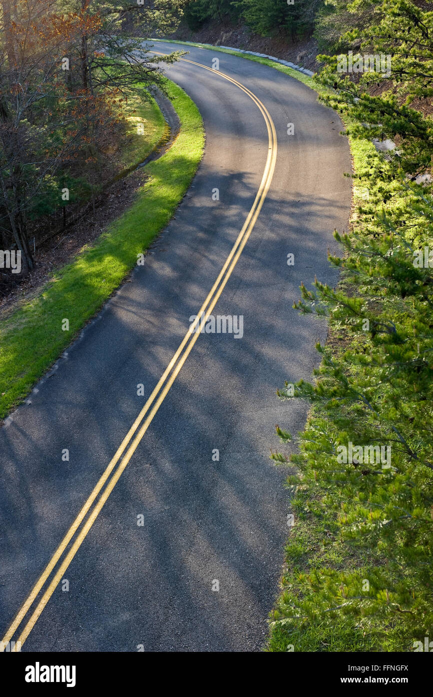 Vibrant Spring Greenery Borders Curved Mountain Road - Stock Image