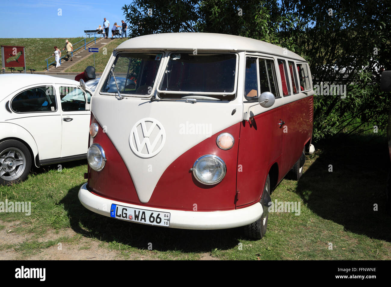VW Bus, Oldtimer meeting, Bleckede / Elbe, Lower Saxony, Germany, Europe - Stock Image