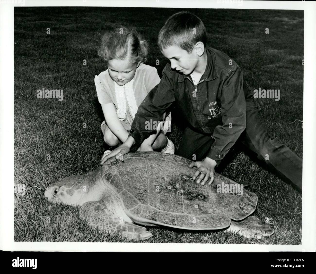 1966 - Two young visitors to Marineland and Game Farm, Niagara Falls, Canada, take a close look at Soupie, a Green Stock Photo