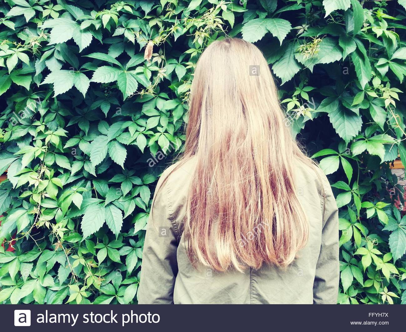 Rear View Of Woman Standing Against Plants In Garden - Stock Image