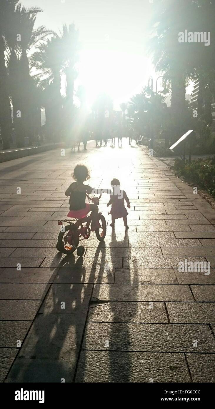 Rear View Of Two Children With Bicycle Outdoors - Stock Image