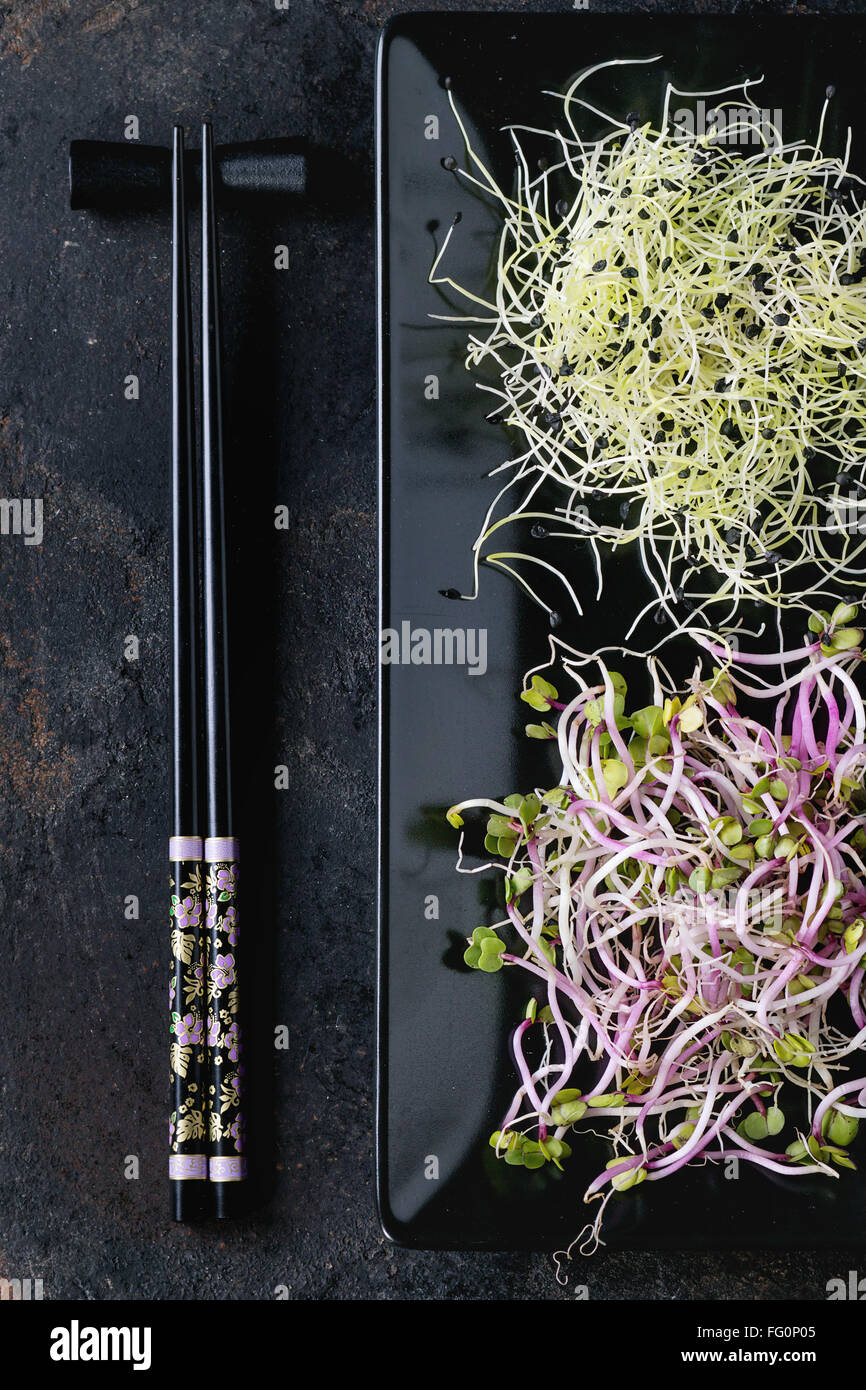 Plate of Fresh  Sprouts - Stock Image
