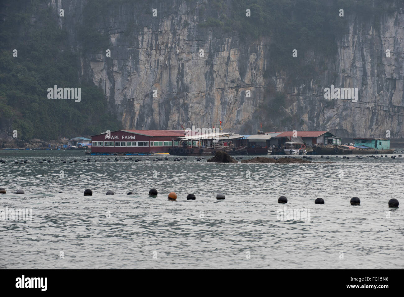 Floating buildings of a pearl farm rearing cultured pearls in oysters in Halong Bay, Northern Vietnam - Stock Image