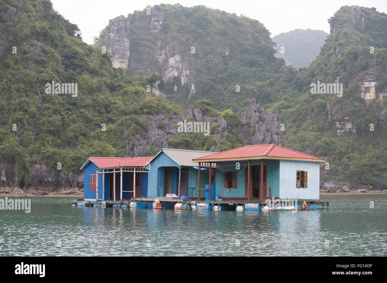 Floating houses in a fishing and pearl village in Halong Bay in North Vietnam - Stock Image