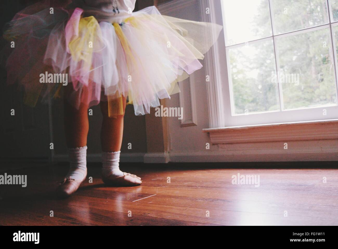 Low Section Of Ballerina Standing On Hardwood Floor At Home Stock Photo