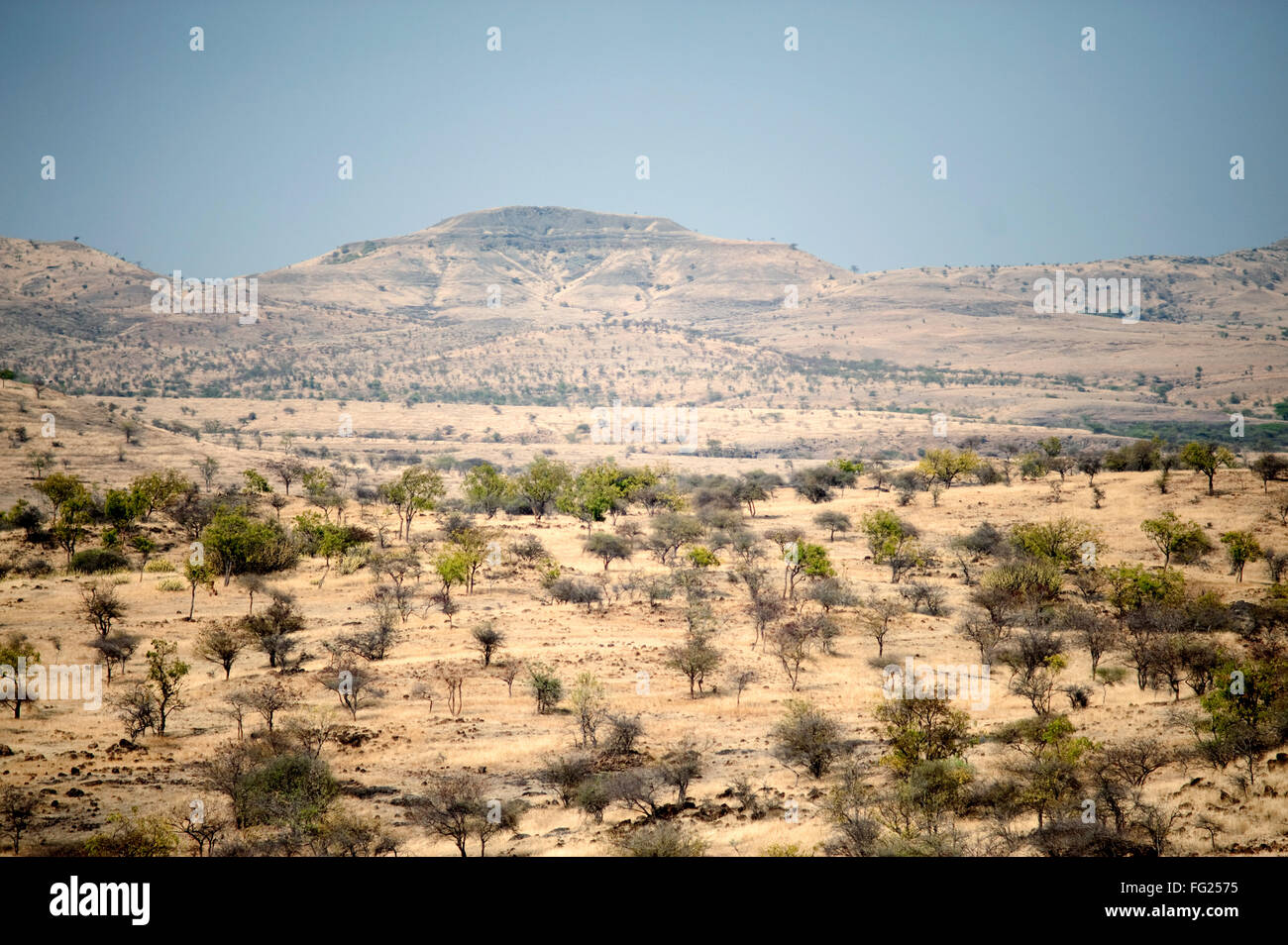 Deserted land near singular village ; Single ; Maharashtra ; India - Stock Image