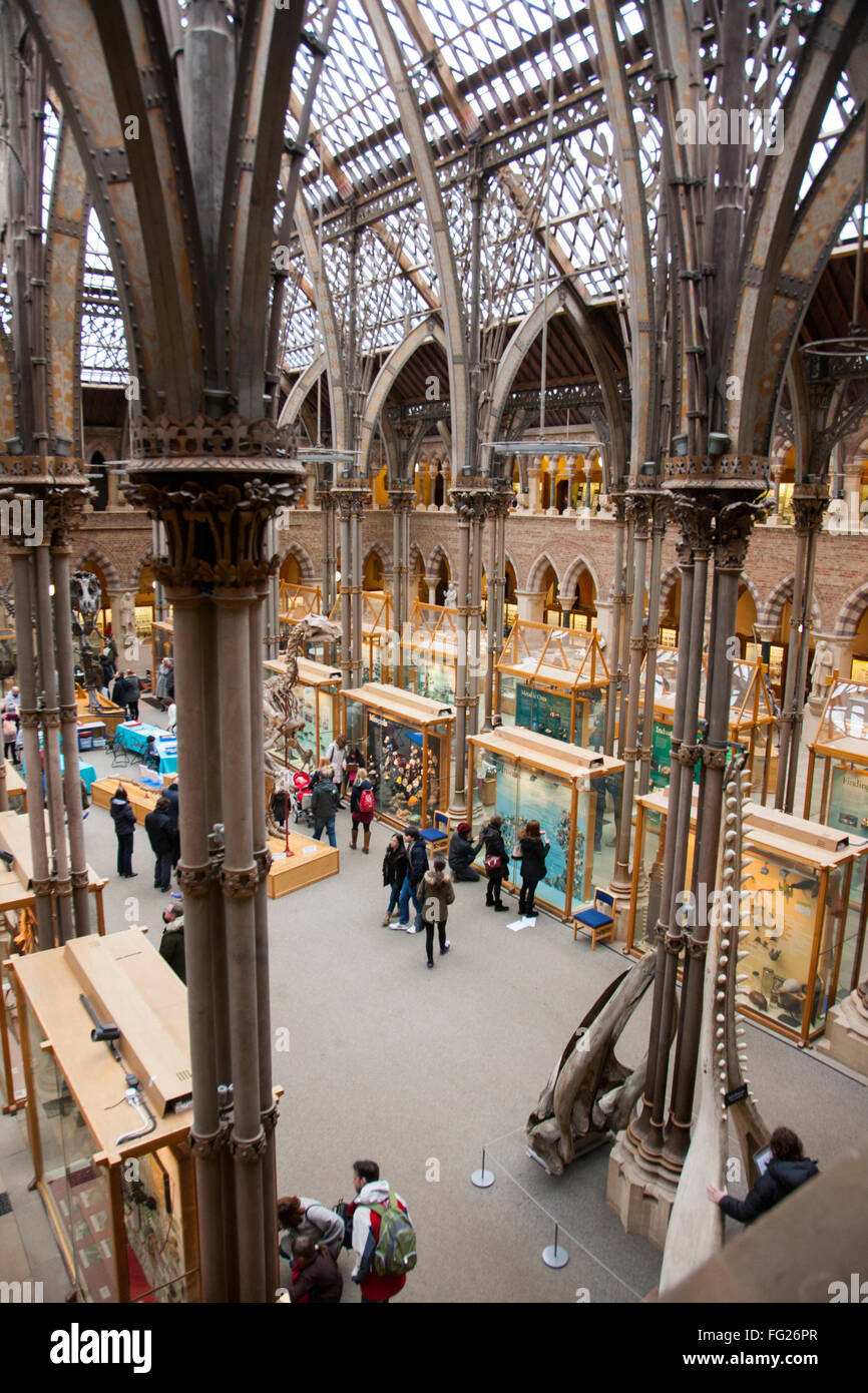 Photo from a high elevated position of / in the main gallery of The Oxford University Museum of Natural History - Stock Image