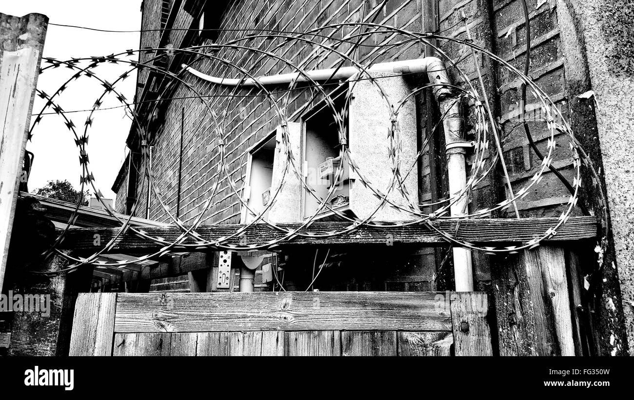Barbed Wire Black And White Stock Photos & Images