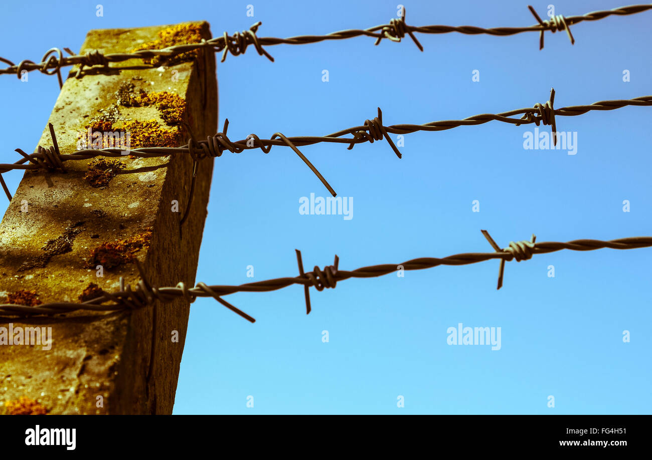 Concrete Fence Post Barbed Wire Stock Photos & Concrete Fence Post ...