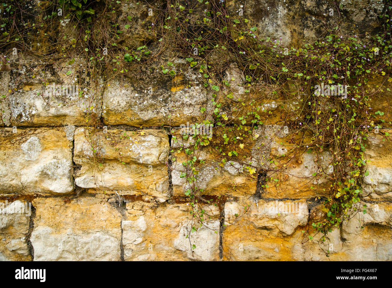 An old, weathered, aged, Stone, brick, rock wall with texture and ...