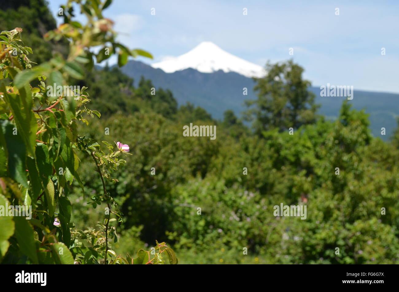 Views of the Villarica volcano and Lago Villarica from rural farmland near Pucon, Araucania, Chile - Stock Image