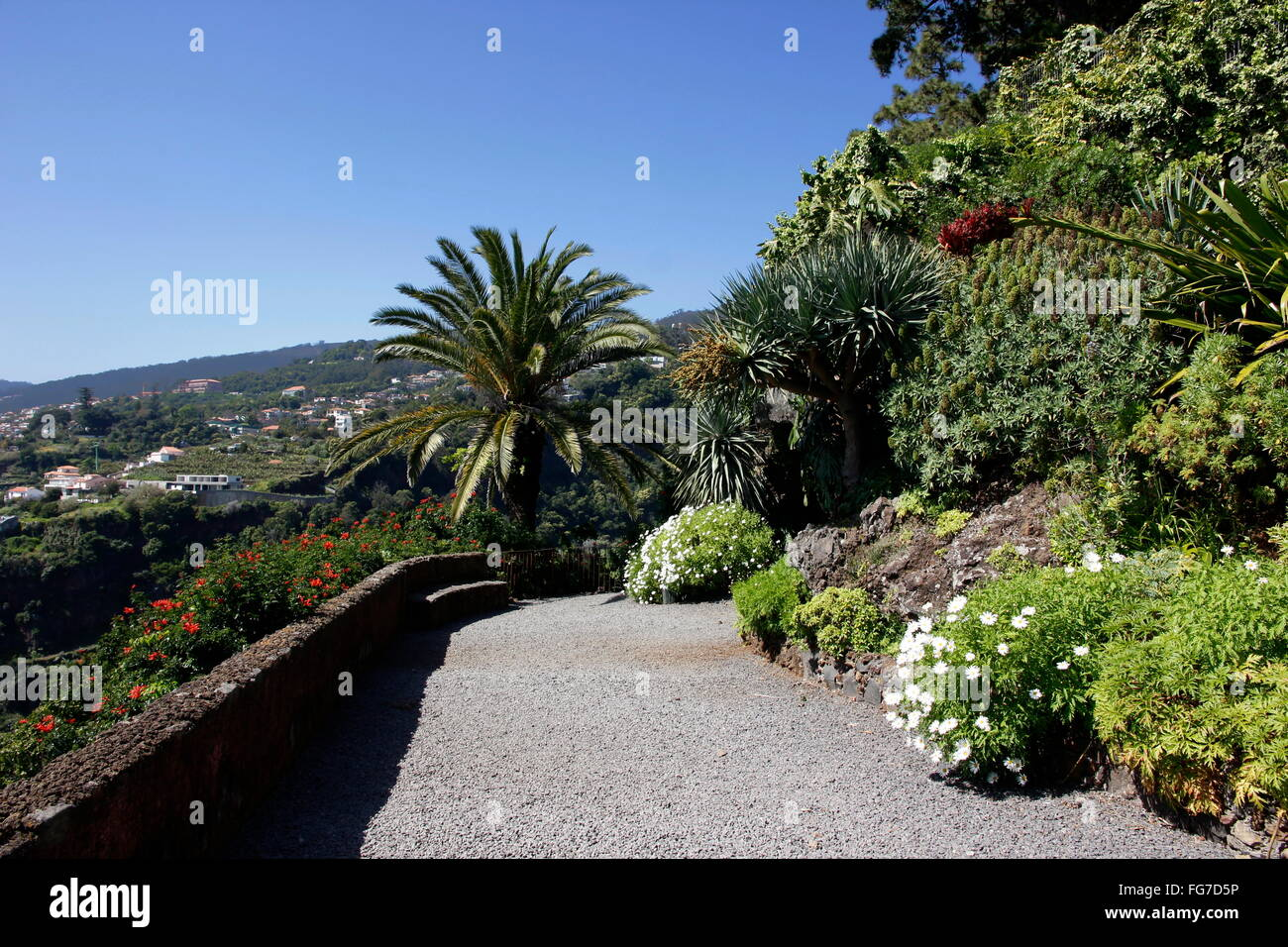 geography / travel, Portugal, Madeira, Funchal, Jardim Botanico (botanical garden), Additional-Rights-Clearance - Stock Image