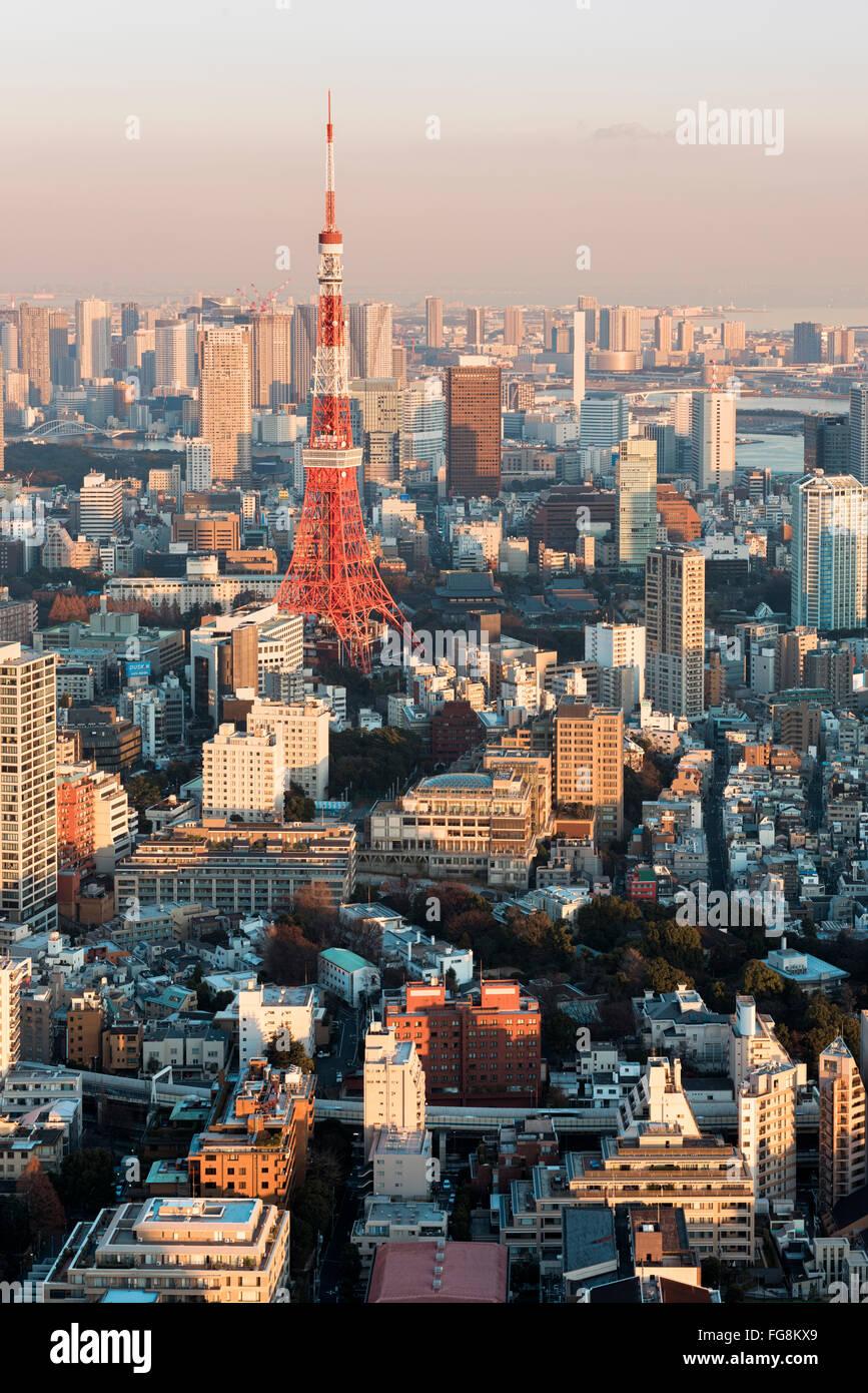 Tokyo, Japan - January 14, 2016: Tokyo Skyline at sunset. - Stock Image