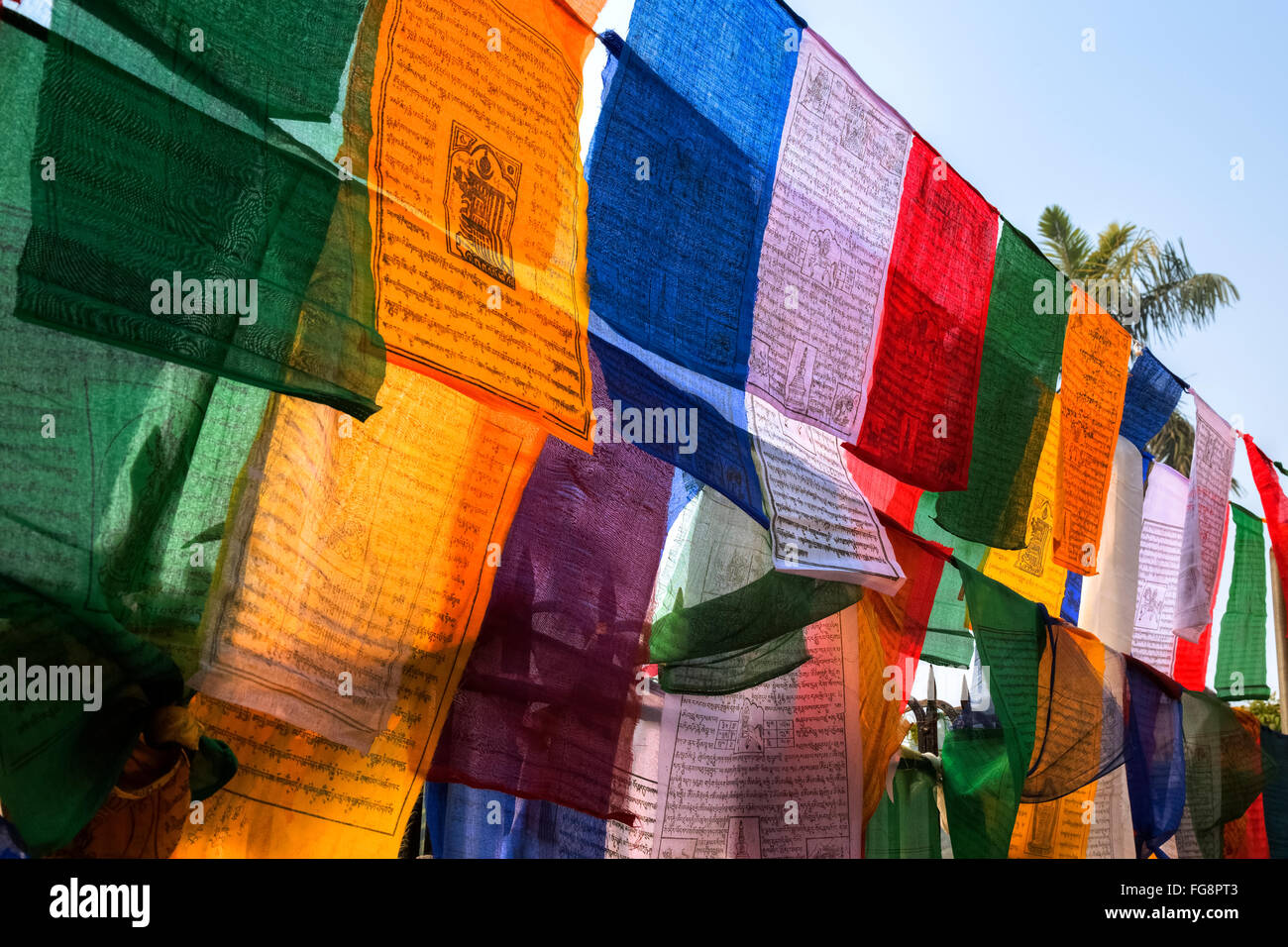 Tibetan prayer flags in Sarnath Temple, Varanasi, Uttar Pradesh, India - Stock Image