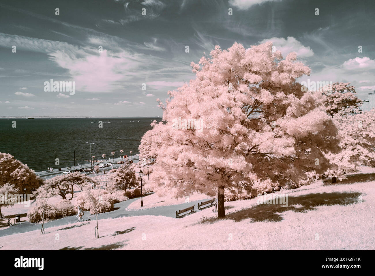False Colour Infra Red Image on Cliffs at Westcliff-on-Sea Stock Photo