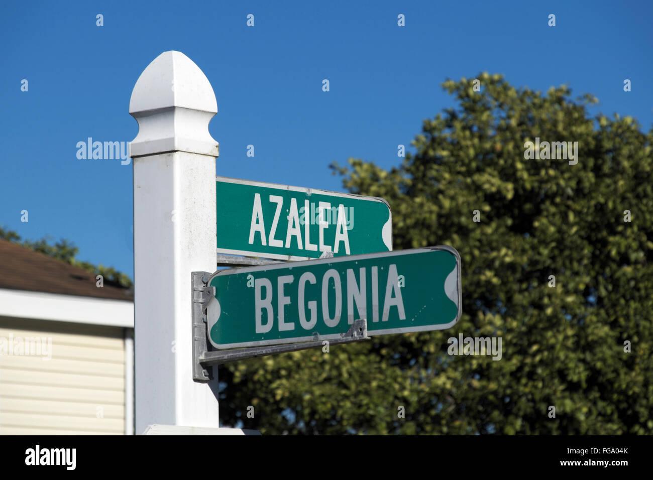 Corner street sign in an Alamo, Texas residential neighborhood. Stock Photo
