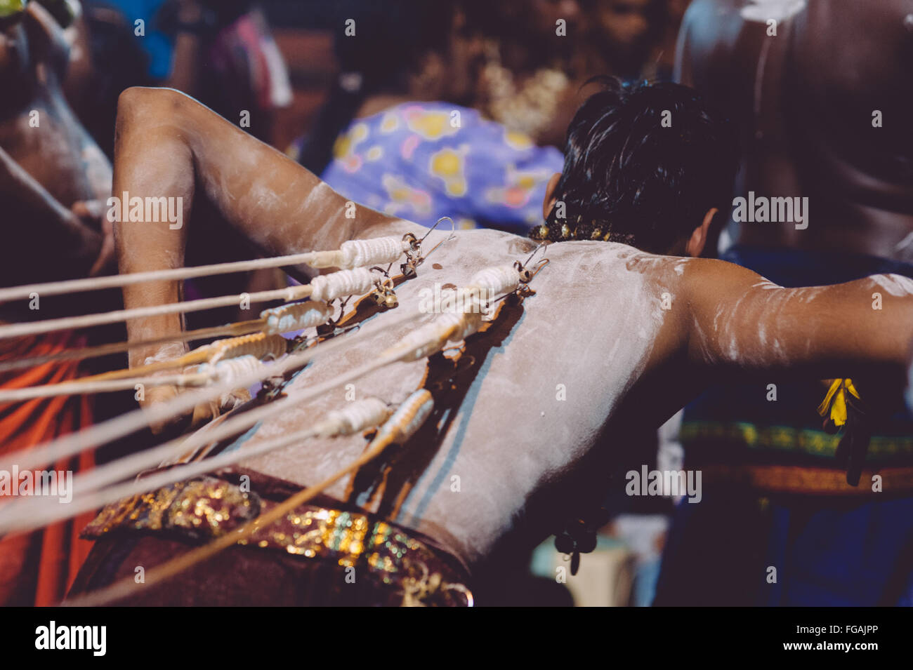 Hook With Rope Pierced On Back Of Man During Traditional Ceremony - Stock Image