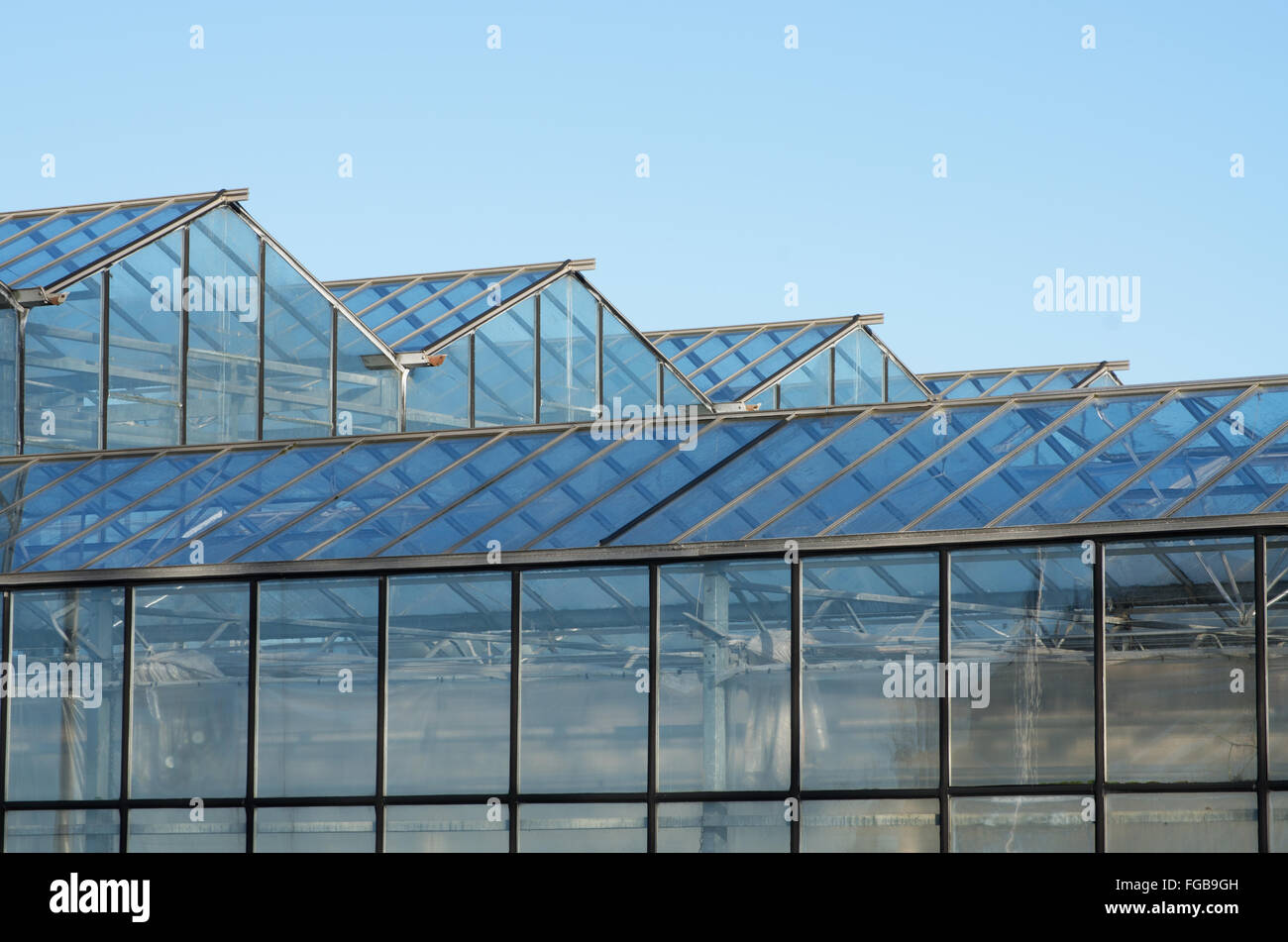 Roof of greenhouse with glass panels. - Stock Image