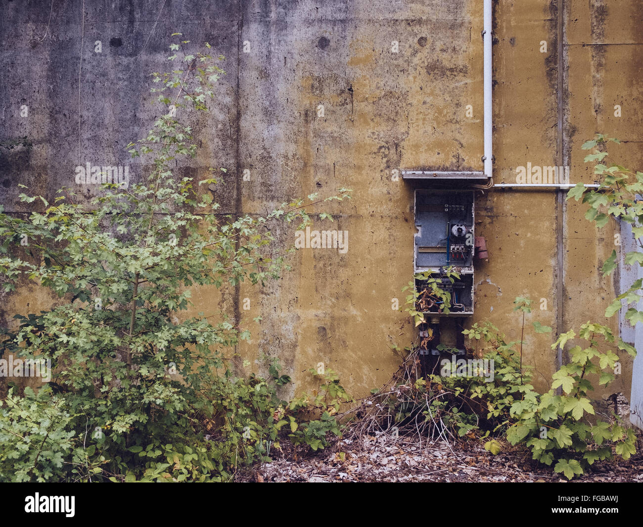 Abandoned Damaged Electric Meter On Wall - Stock Image